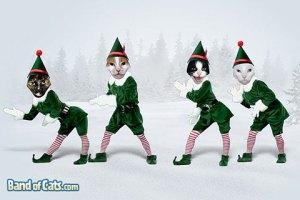 Dancing elf cats